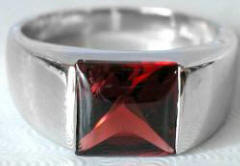 Garnet Tank Ring in 14k White Gold